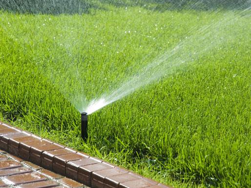 Rasen Bewässerung bei Trockenheit
