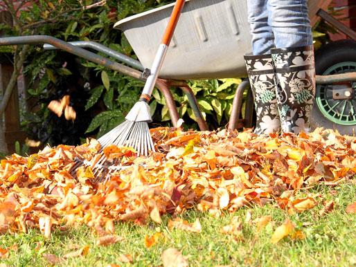 Gartenarbeit mit Gartengeräten