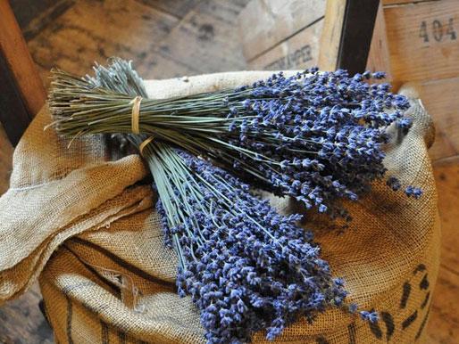 Lavendelstrauss Raumduft