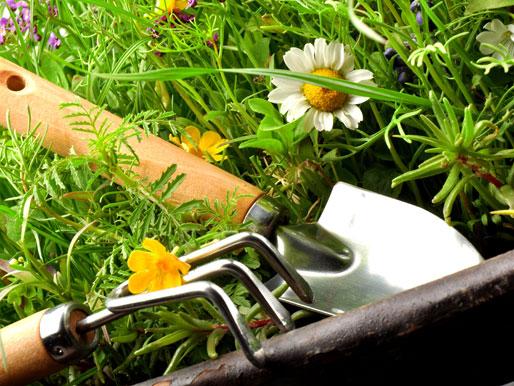 Gartengeräte Pflege